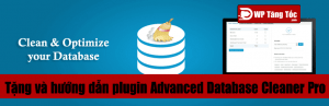 Hướng dẫn sử dụng plugin Advanced Database Cleaner PRO