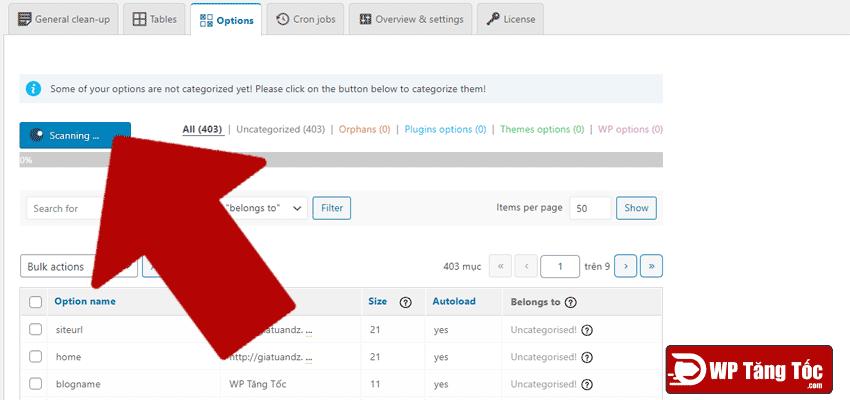 tab-wp-option-thiết-lập-cơ-sở-dữ-liệu-của-wordpress