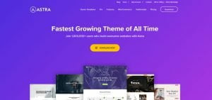 themes load nhanh nhất wordpress dành cho blog
