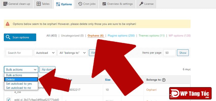 thiết-lập-cơ-sở-dữ-liệu-của-WordPress-XÓA-Orphans