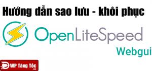 Cách sao lưu và khôi phục websever openlitespeed