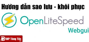 Hướng dẫn sao lưu và khôi phục websever openlitespeed