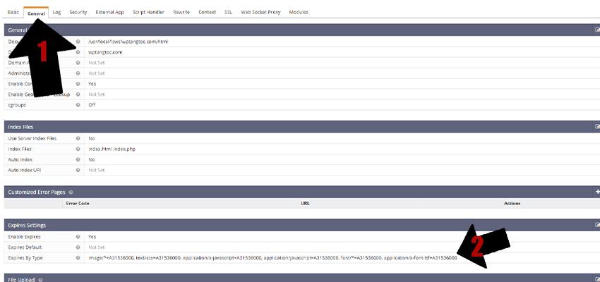 Thiết-lập-cache-trình-duyệt-openlitespeed-webui-2