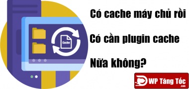 có cache máy chủ rồi có cần plugin cache nữa không