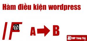 Hàm PHP có điều kiện wordpress
