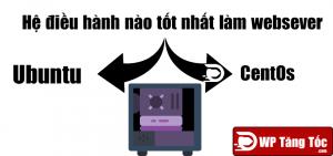 CentOS vs Ubuntu – Bạn nên chọn server nào làm web server của mình
