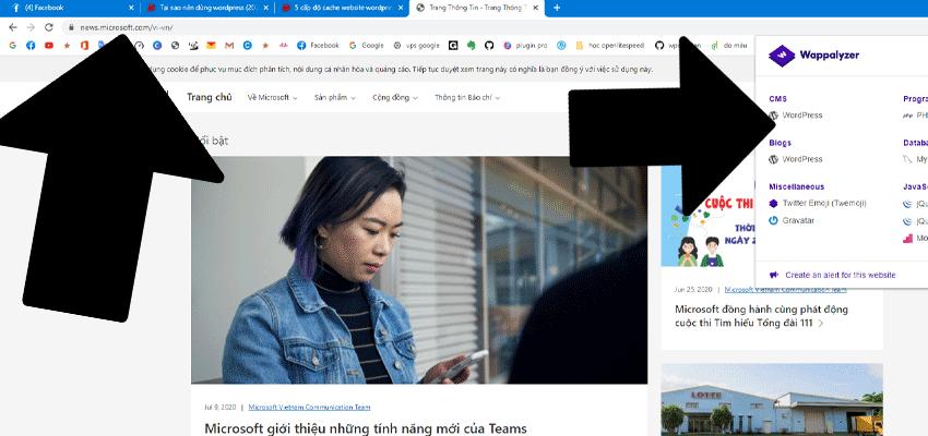 news mircrosoft dang sử dụng wordpress