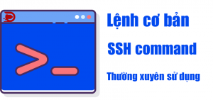 Lệnh cơ bản quản trị ssh command linux thường dùng wordpress