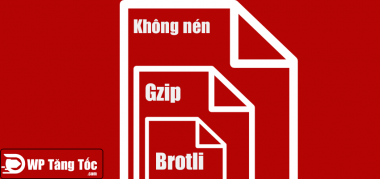 nén gzip and brotli