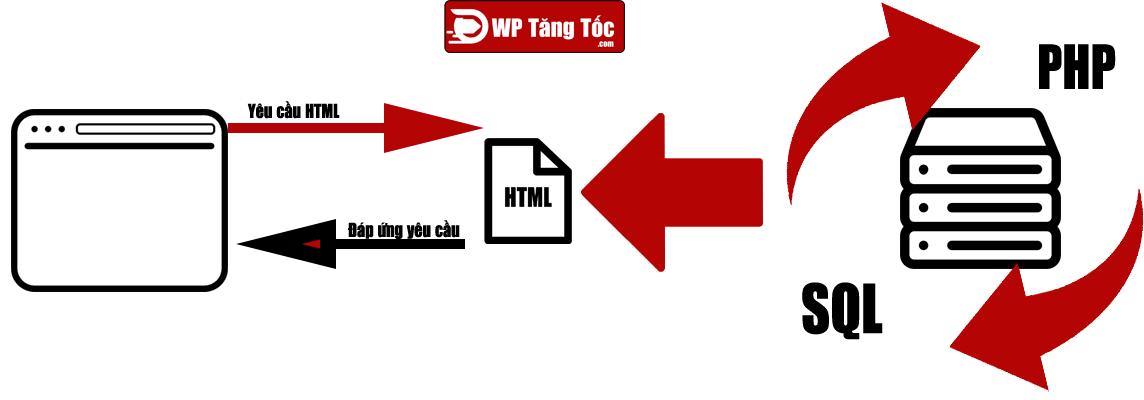 sql-và-php-làm-việc-tạo-ra-html