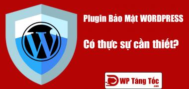 plugin bảo mật có thực sự cần thiết