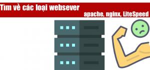 Tìm hiểu về websever Apache và nginx và LiteSpeed enterprise và OpenLiteSpeed
